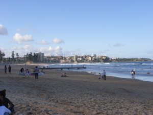 Real Manly Beach